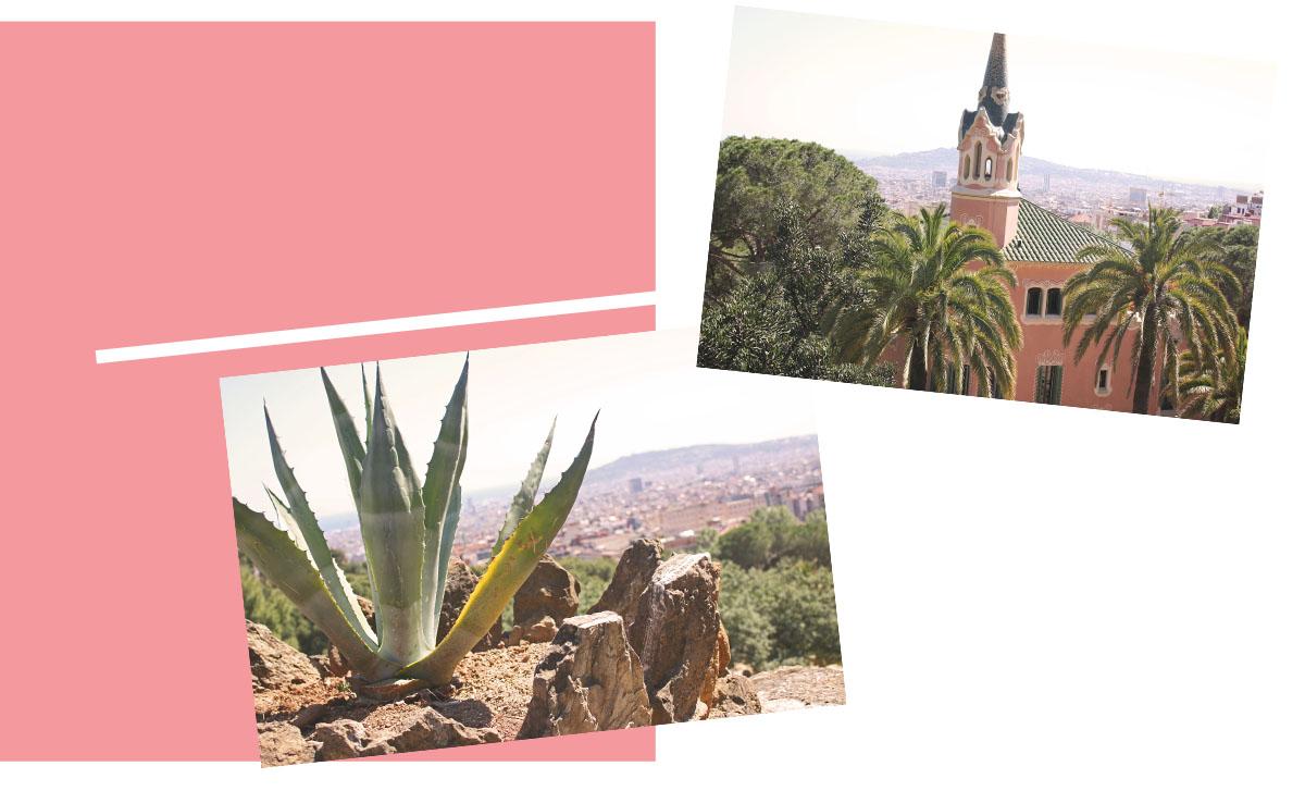 park-gaudi-barcelona-traveldiary